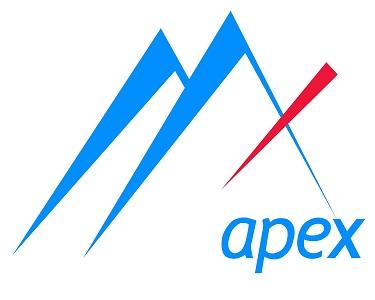 Apecxinsur logo